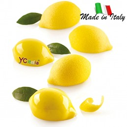 Stampo LIMONE & LIME 2